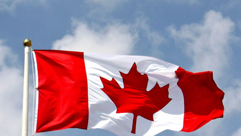 Eagle Eye tech to power big Canadian loyalty programme expansion